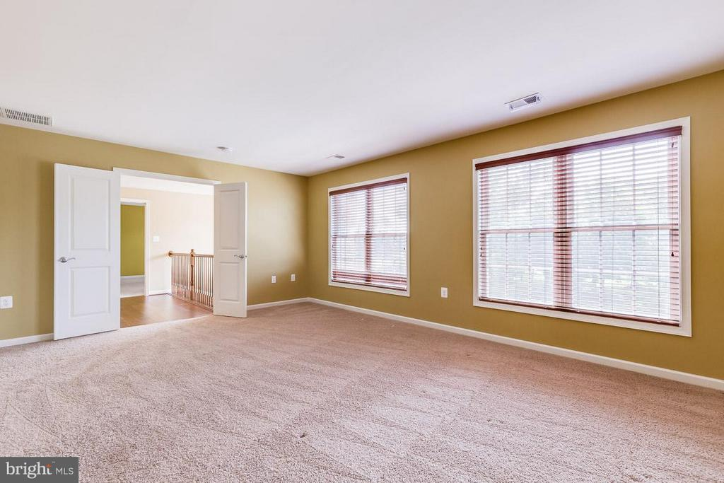 Master bdrm with plush carpeting and dual walk-ins - 23221 FALLEN HILLS DR, ASHBURN