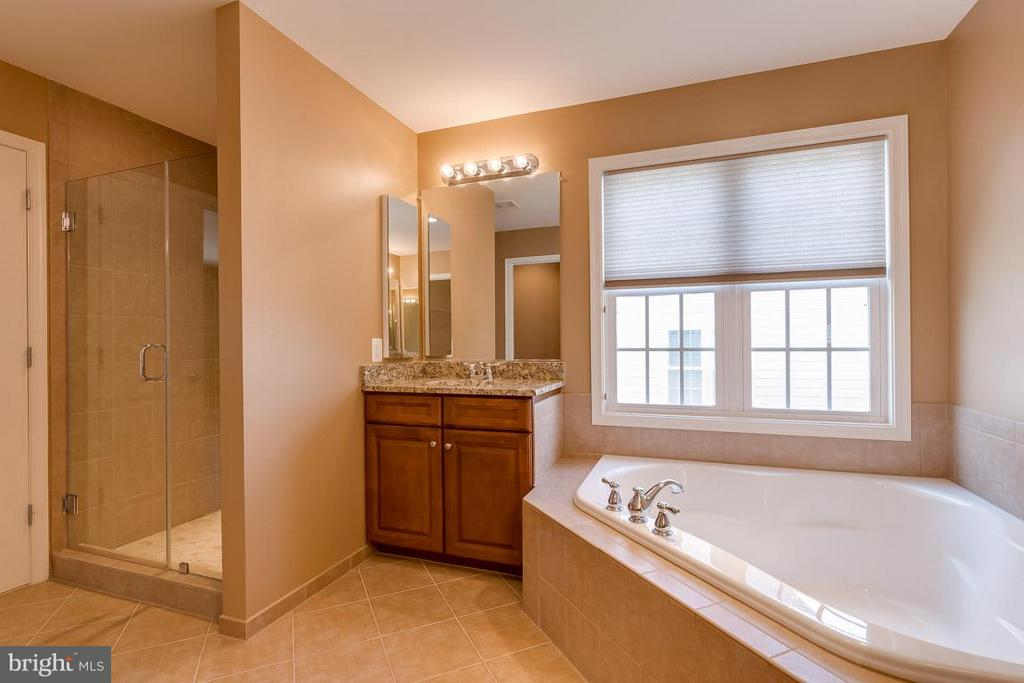 Master bathroom with soaking tub and dual vanities - 23221 FALLEN HILLS DR, ASHBURN