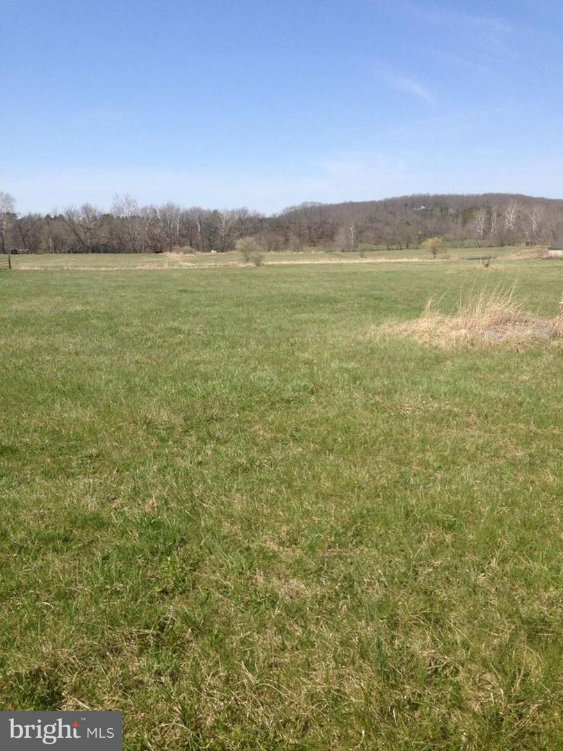 Land for Sale at Bucks Mill Rd Front Royal, Virginia 22630 United States
