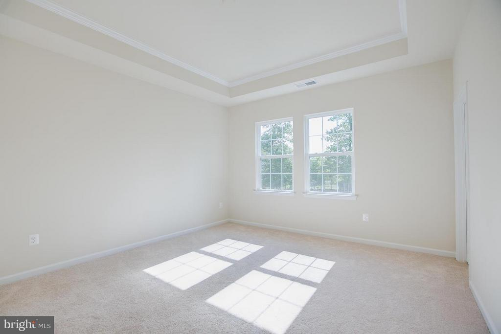 Master Bedroom With Trey Ceilings! - 174 VERBENA DR, STAFFORD