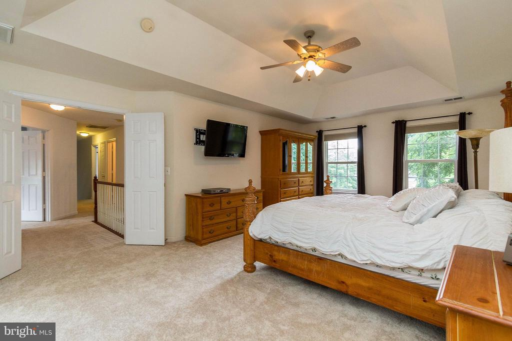 Master bedroom with coffered ceiling - 320 ALABAMA DR, HERNDON