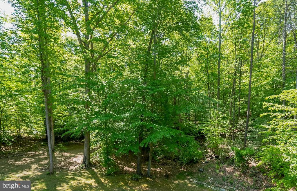 YOUR OWN PARK with creeks and trails throughout - 214 KIMBERWICK LN, STAFFORD