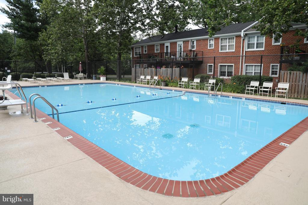 Renovated community pool - 2846B WAKEFIELD ST S #B, ARLINGTON