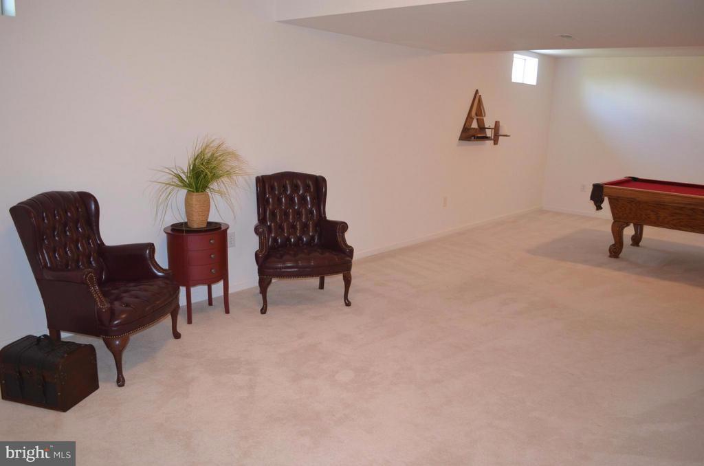 Lower Level Recreation room - - 6096 EDMONT DR, FREDERICK