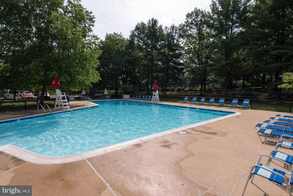 Outdoor Pool - 3101 MANCHESTER ST #516, FALLS CHURCH