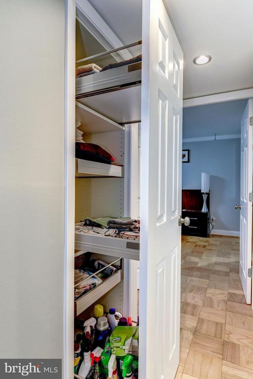Custom Pull-Out Closet System in Hallway - 3101 MANCHESTER ST #516, FALLS CHURCH