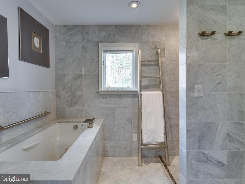 Bath (Master) - 7607 WILLOWBROOK RD, FAIRFAX STATION