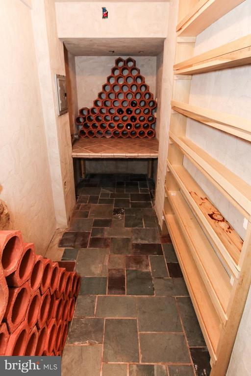 Check out the wine cellar! - 42867 AUTUMN HARVEST CT, BROADLANDS