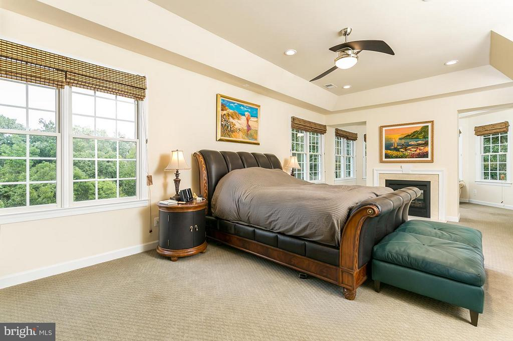 Gorgeous tray ceiling to make you feel regal. - 43288 OVERVIEW PL, LEESBURG