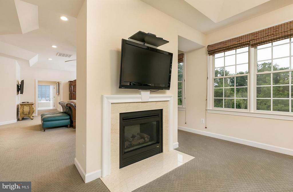 Sitting room with fireplace. - 43288 OVERVIEW PL, LEESBURG