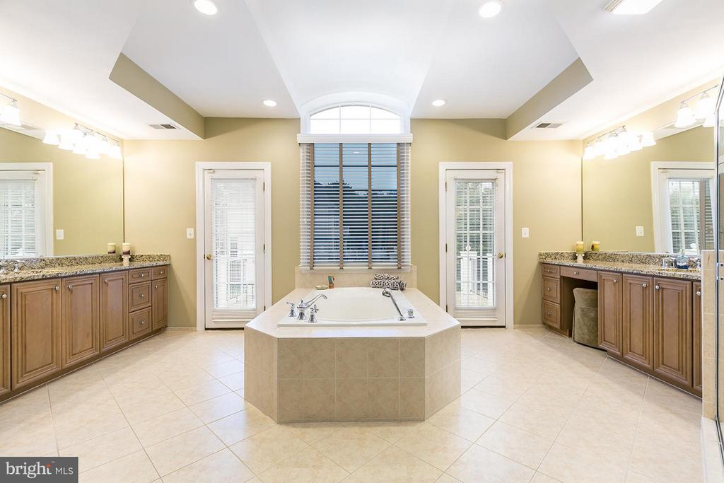 Oversized Jacuzzi bath and walk-out terrace. - 43288 OVERVIEW PL, LEESBURG