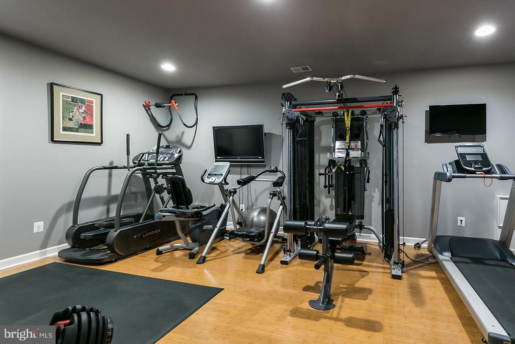 Home gym. - 43288 OVERVIEW PL, LEESBURG