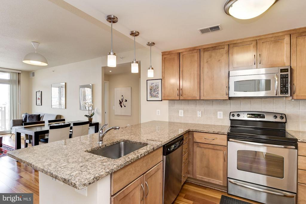 Granite Counters + Stainless Steel Appliances - 888 QUINCY ST #1212, ARLINGTON