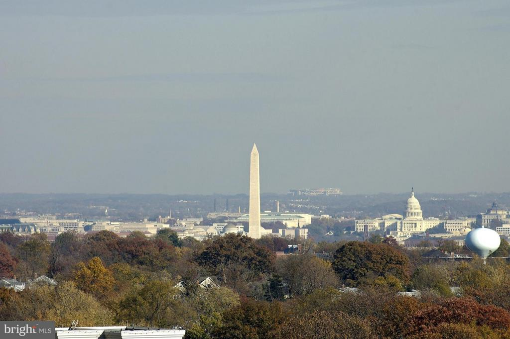 View from the Rooftop - 888 QUINCY ST #1212, ARLINGTON