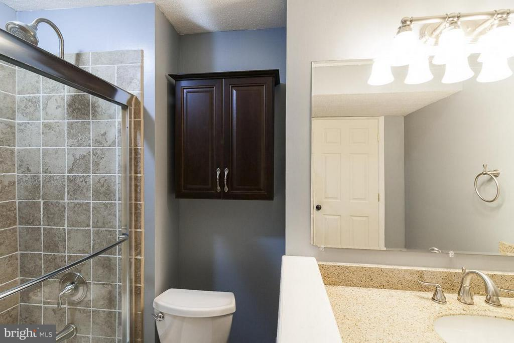 Basement Full Bath - 25981 DONOVAN DR, CHANTILLY
