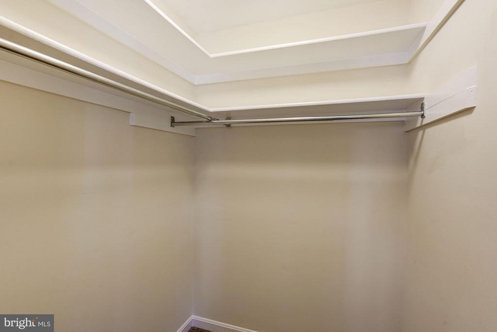 Master Bed Walk-In Closet - 1109 VERNON ST, ARLINGTON