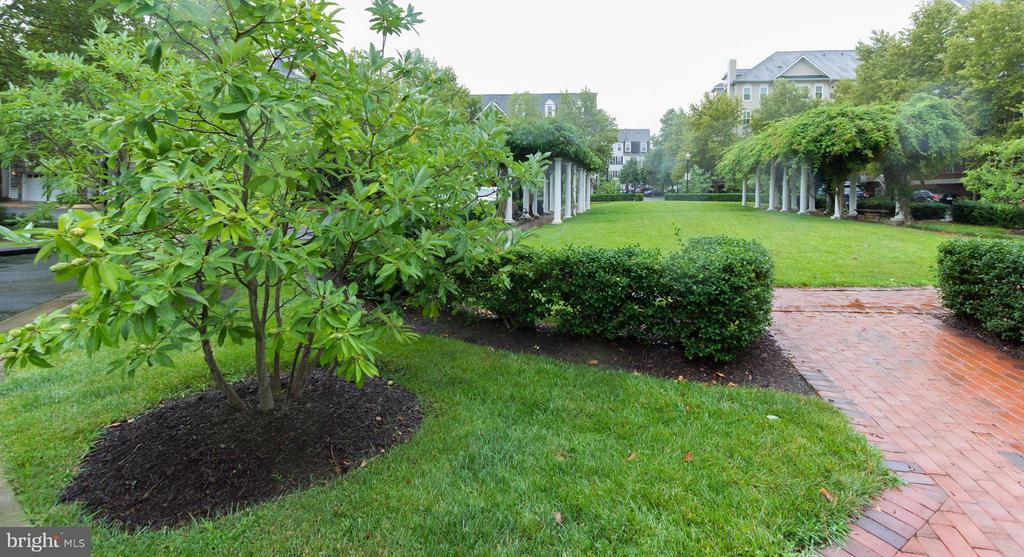Beautiful park setting with walkways and benches - 5112 DONOVAN DR #203, ALEXANDRIA