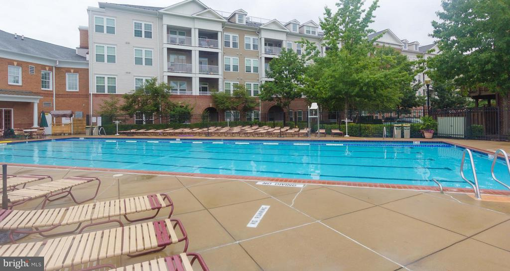 Outdoor pool with lounge chairs to relax - 5112 DONOVAN DR #203, ALEXANDRIA