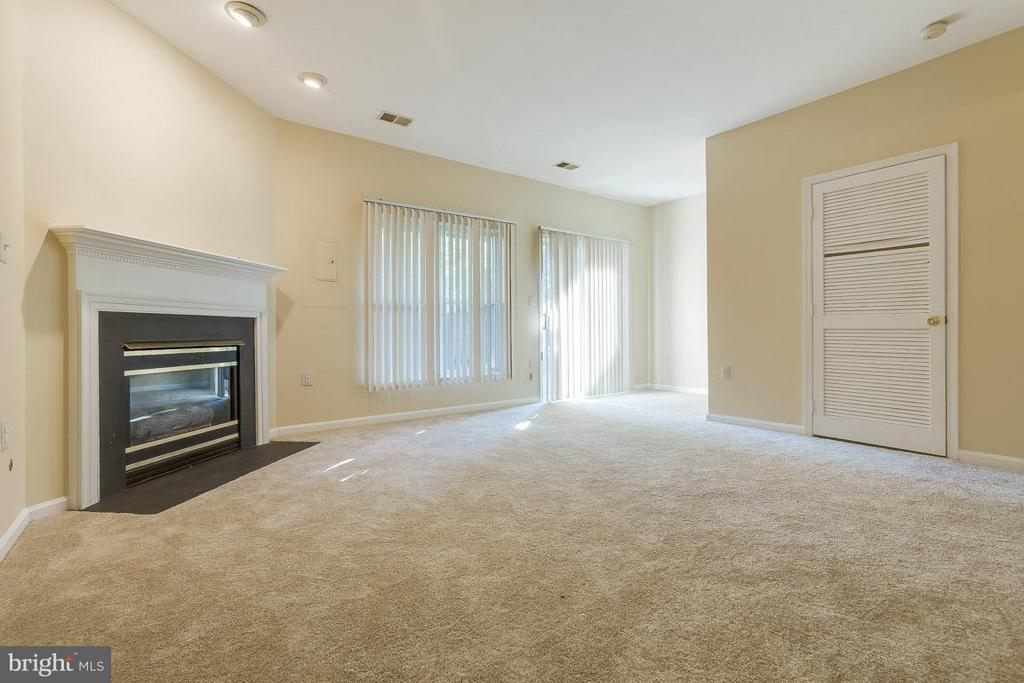 Family Room on lower level with FP - 14702 BEAUMEADOW DR, CENTREVILLE