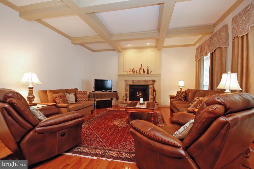 Elegant & Warm Family Room w/Stone Surround FP - 5657 CARIBBEAN CT, HAYMARKET
