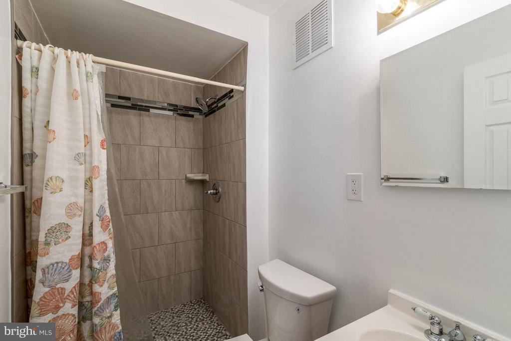 Bath (Master) - 14444 COOL OAK LN, CENTREVILLE