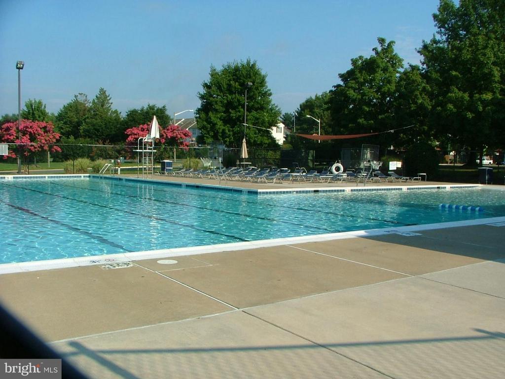 Generous Sized Outdoor Pool - 843 SMARTTS LN NE, LEESBURG
