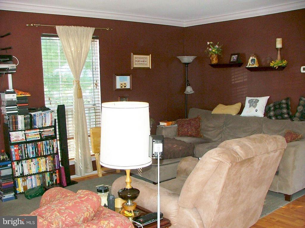 Family Room - 843 SMARTTS LN NE, LEESBURG