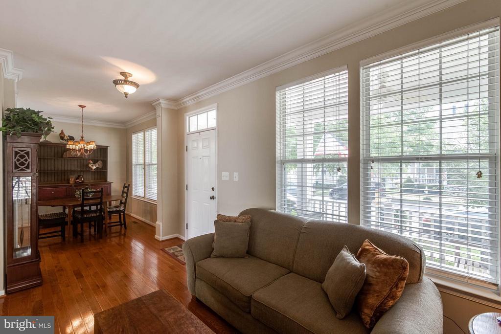 Living Room - 42994 CHESTERTON ST, ASHBURN