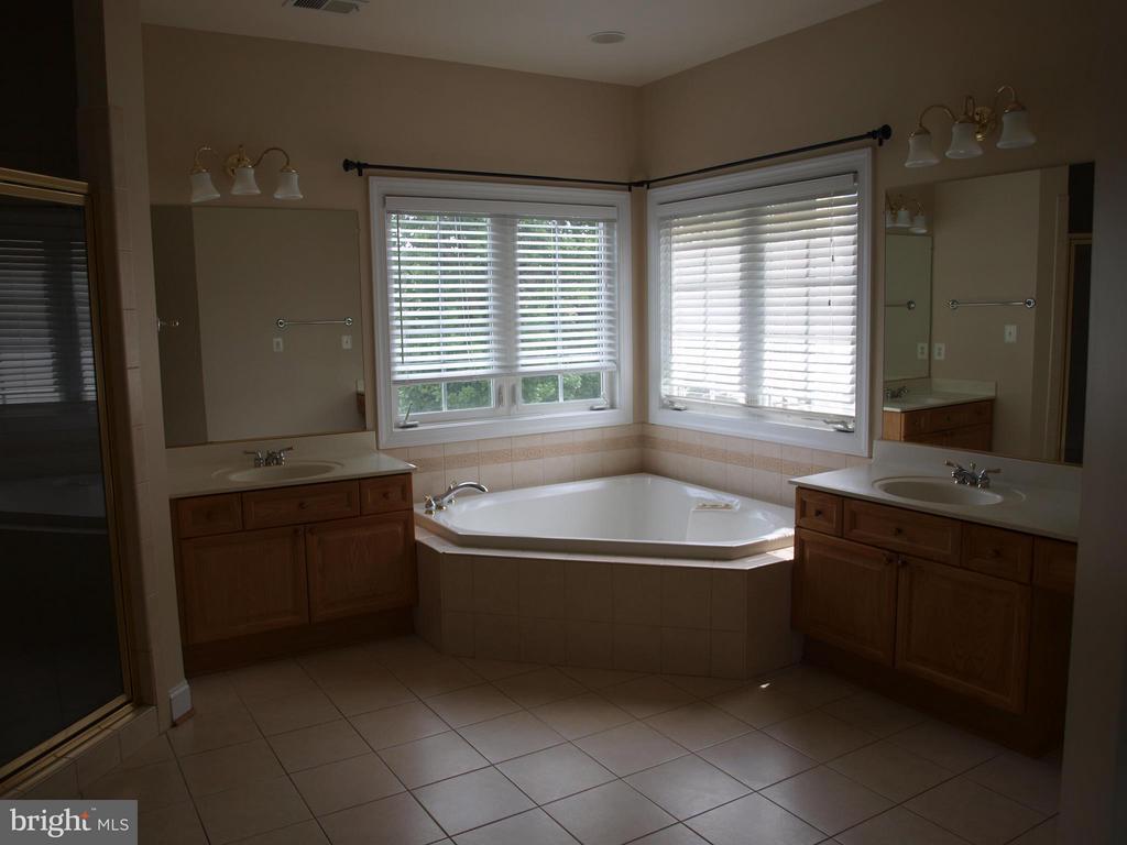 Bath (Master) - 206 LAWSON RD SE, LEESBURG
