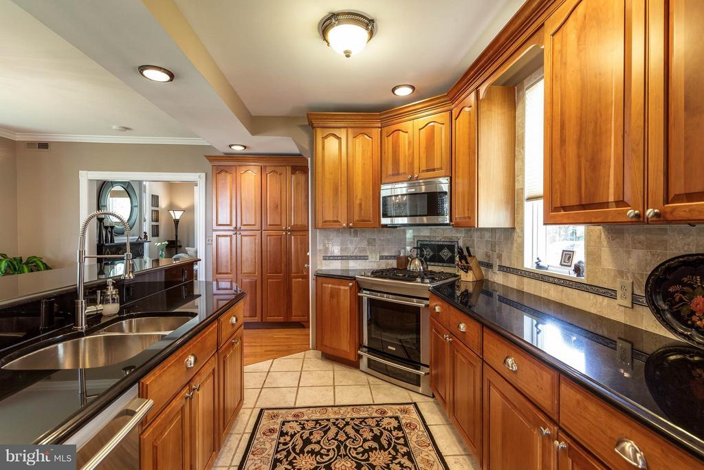 Granite counters &~stainless appliances - 328 HUME AVE, ALEXANDRIA