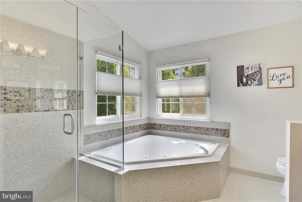 Frameless shower door, upgraded ceramic tile! - 20977 DEER RUN WAY, ASHBURN