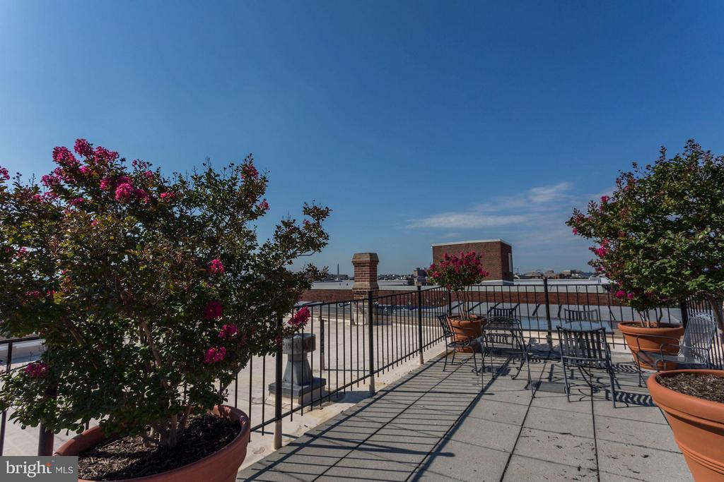 Rooftop Deck - 2039 NEW HAMPSHIRE AVE NW #209, WASHINGTON