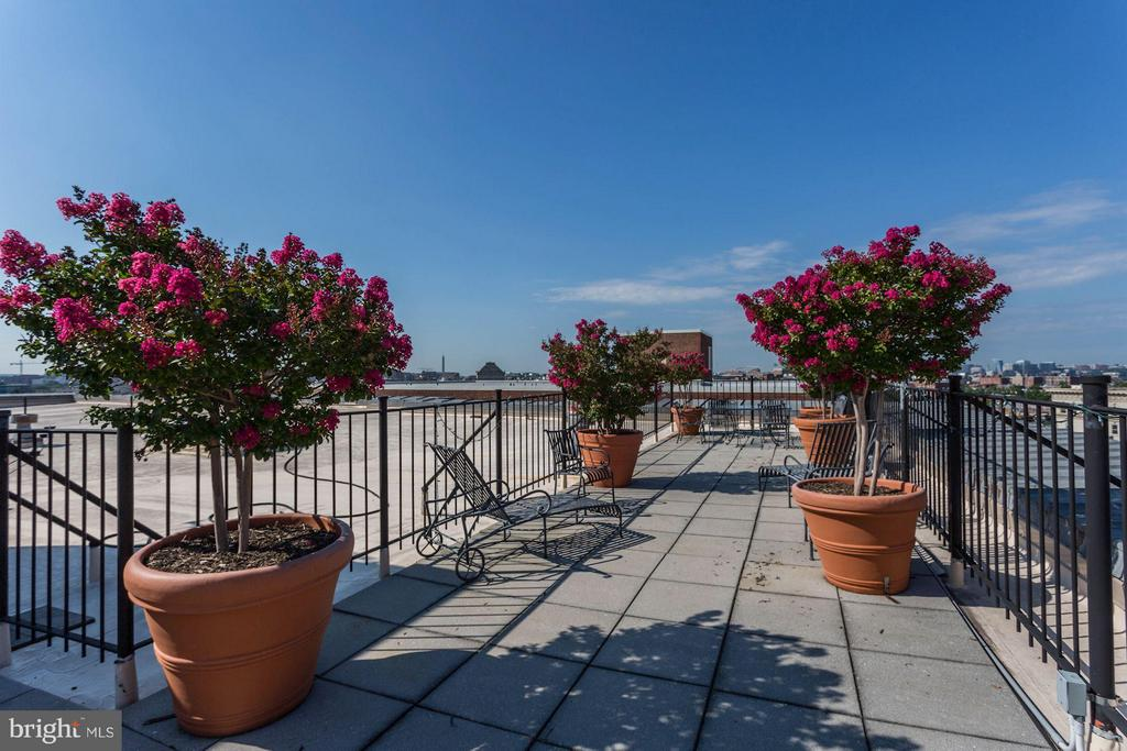 Beautiful Rooftop Deck with Views - 2039 NEW HAMPSHIRE AVE NW #209, WASHINGTON