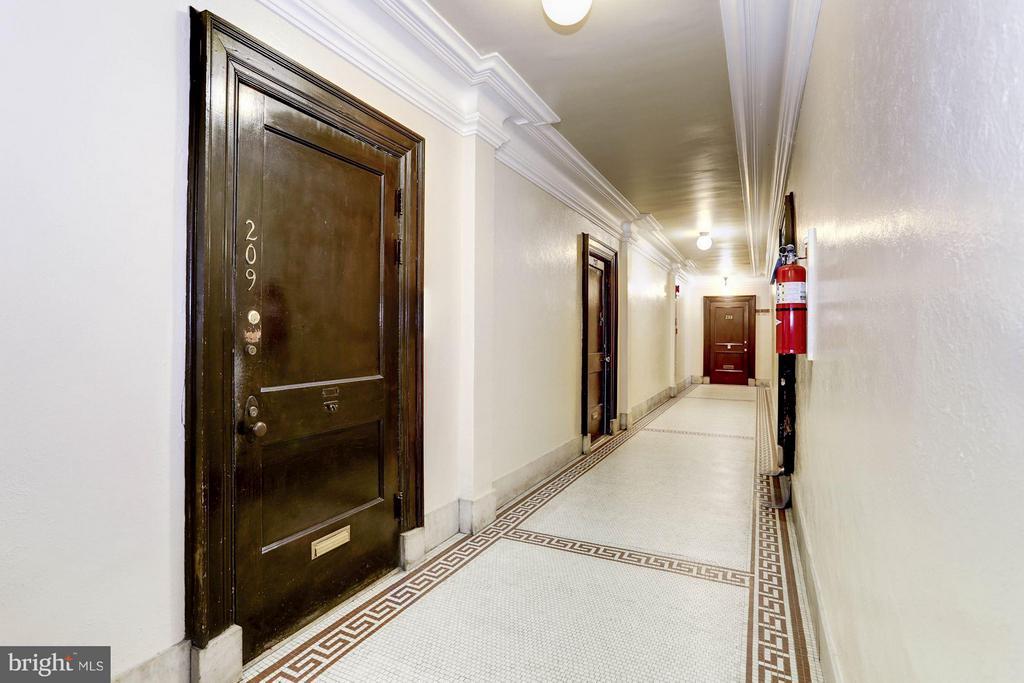 Apartment Door and Hallway - 2039 NEW HAMPSHIRE AVE NW #209, WASHINGTON