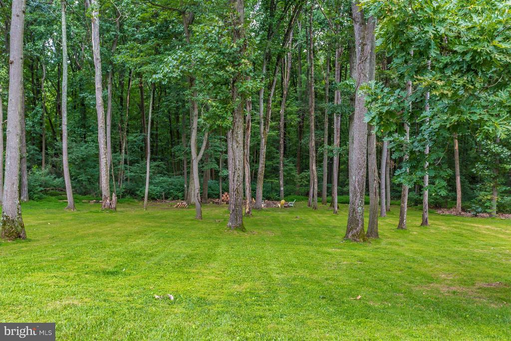 House backs to trees and woods - 14112 CLEARWOOD CT, MOUNT AIRY
