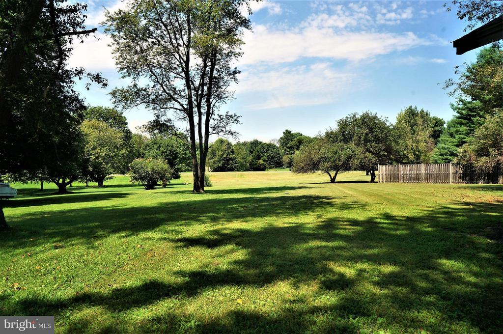 Rear Yard View of 1.39 Acre Lot - 4398 STEPNEY DR, GAINESVILLE