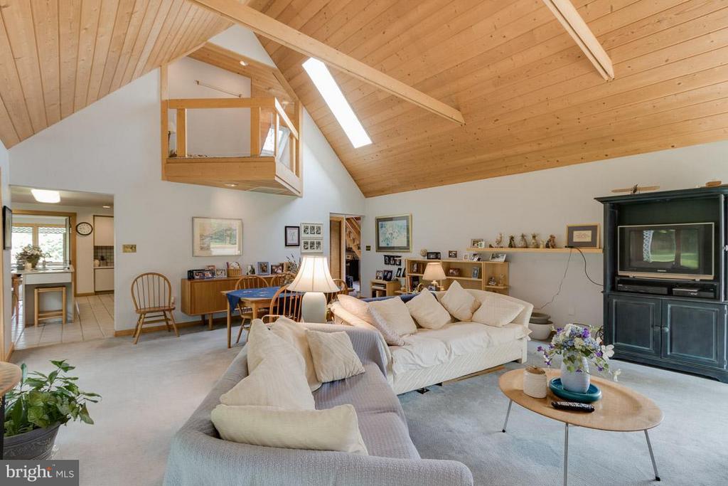 Great Room w/ New Skylight - 4398 STEPNEY DR, GAINESVILLE