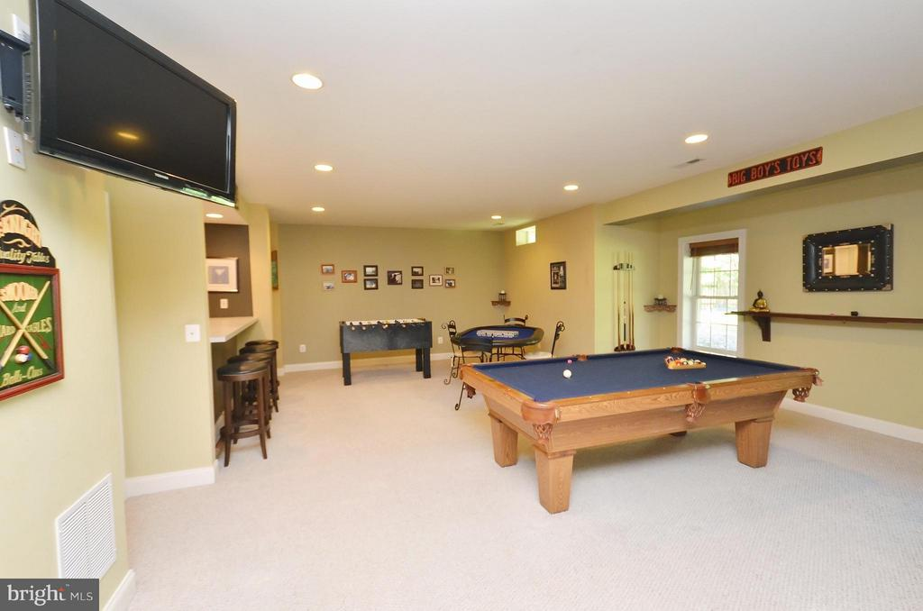 Basement Recreation Room with full windows - 42828 FOREST SPRING DR, LEESBURG