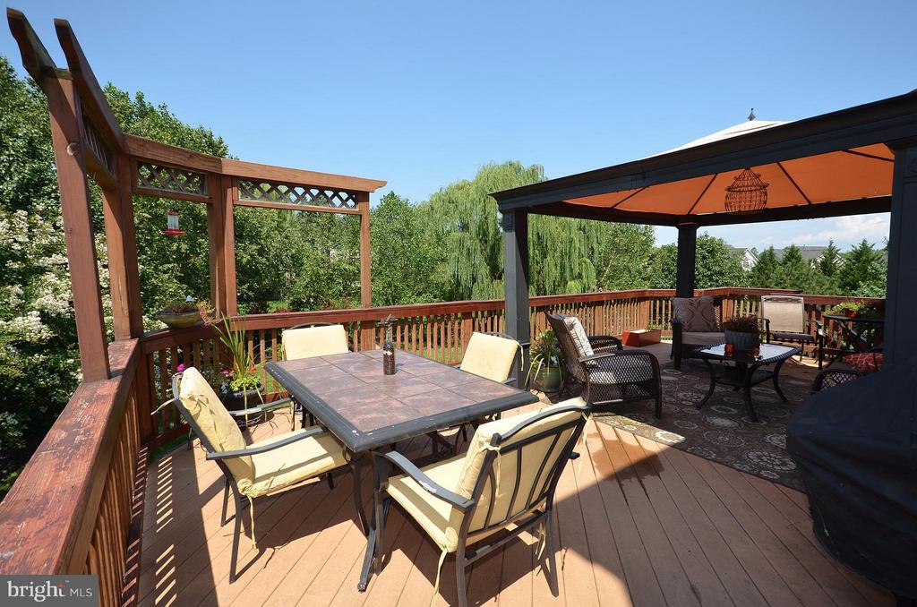 Sitting High for total privacy and dining - 42828 FOREST SPRING DR, LEESBURG