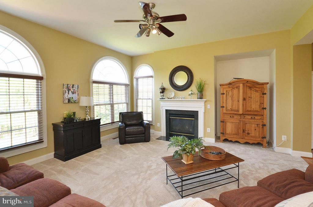 Family Room with sunfilled windows and FP - 42828 FOREST SPRING DR, LEESBURG