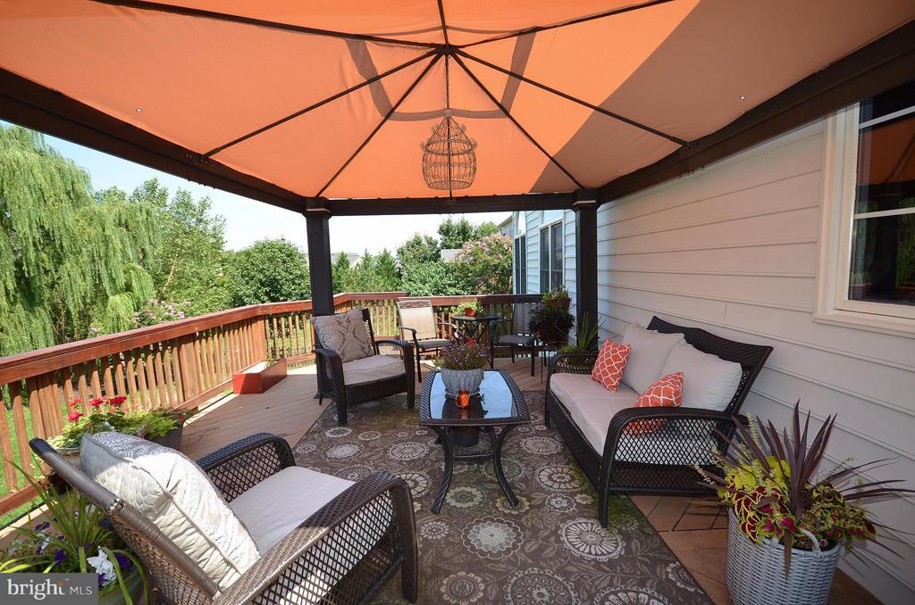 Trex Deck with gorgeous view for entertaining - 42828 FOREST SPRING DR, LEESBURG
