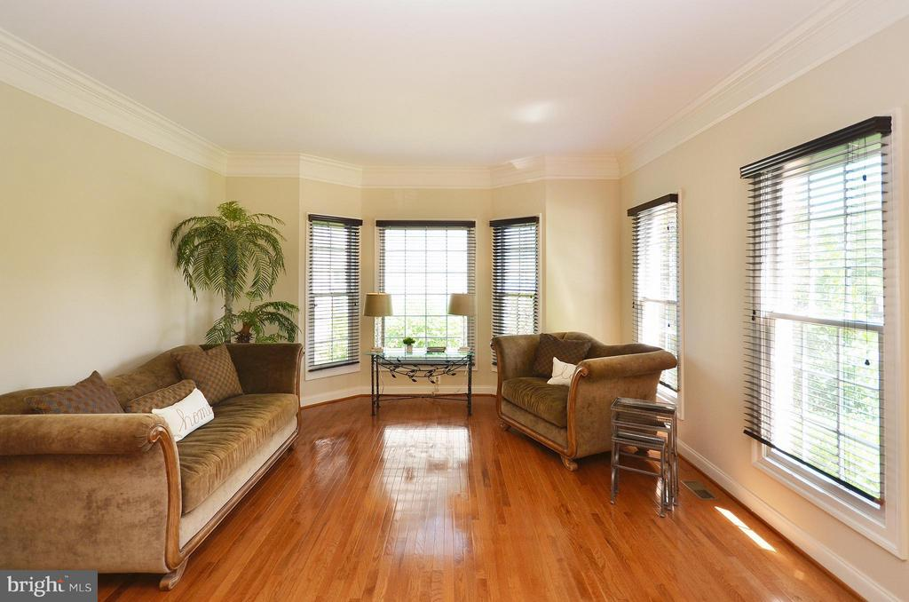 Sun Filled Living Room with HW Floors - 42828 FOREST SPRING DR, LEESBURG
