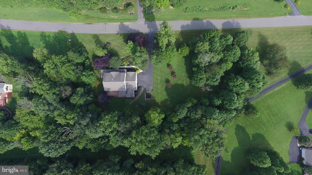Aireal view of the private/nature surroundings - 39637 GOLDEN SPRINGS CT, HAMILTON