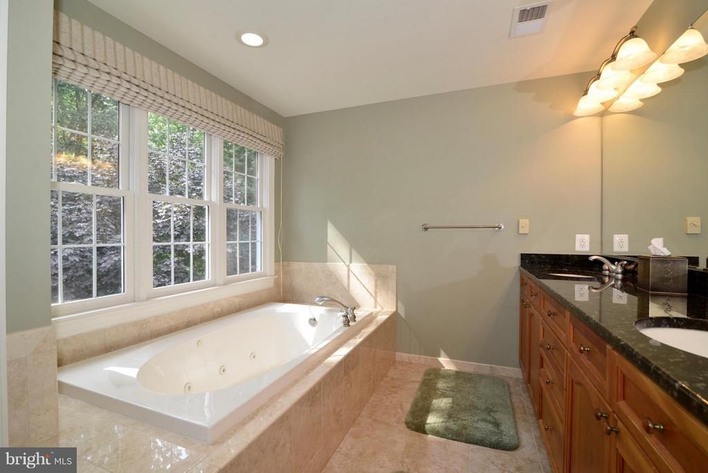 Master bath w/Jacuzzi tub & separate shower - 39637 GOLDEN SPRINGS CT, HAMILTON