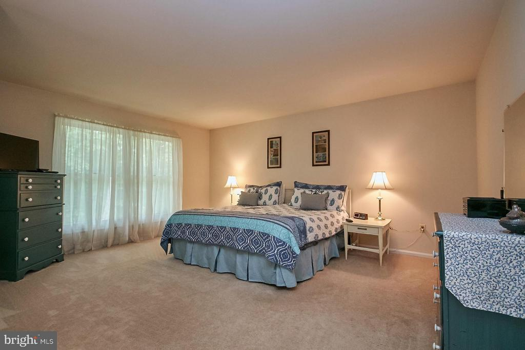 Huge Master Bedroom - 12213 HENDERSON RD, CLIFTON