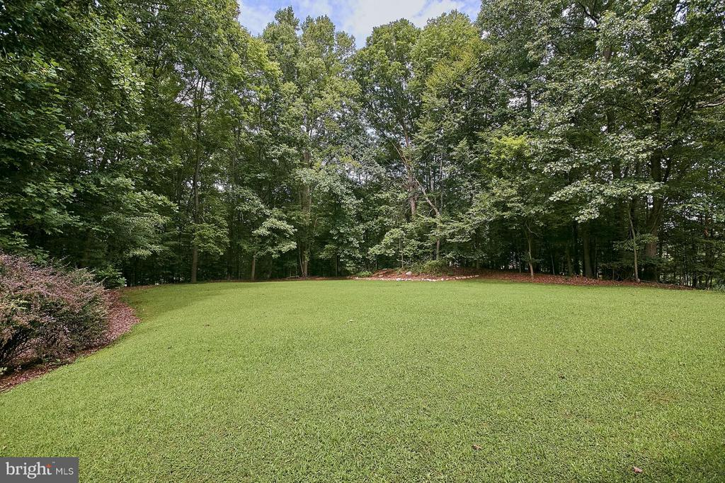 Large area for play - 12213 HENDERSON RD, CLIFTON
