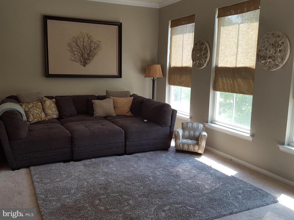 Large Family Room - 42508 DESOTO TER, BRAMBLETON