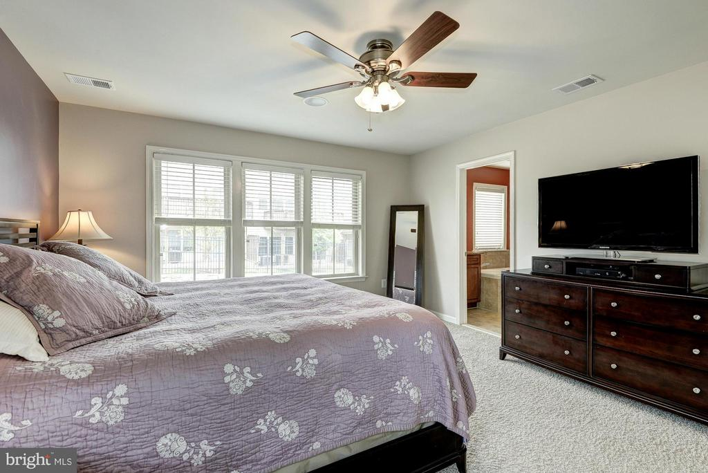 Master Features Ceiling Fan and Nice Carpet - 2527 KENMORE CT, ARLINGTON