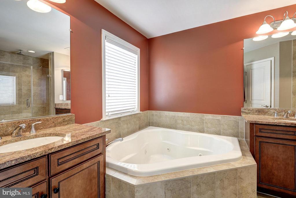 Separate Tub and Shower - 2527 KENMORE CT, ARLINGTON