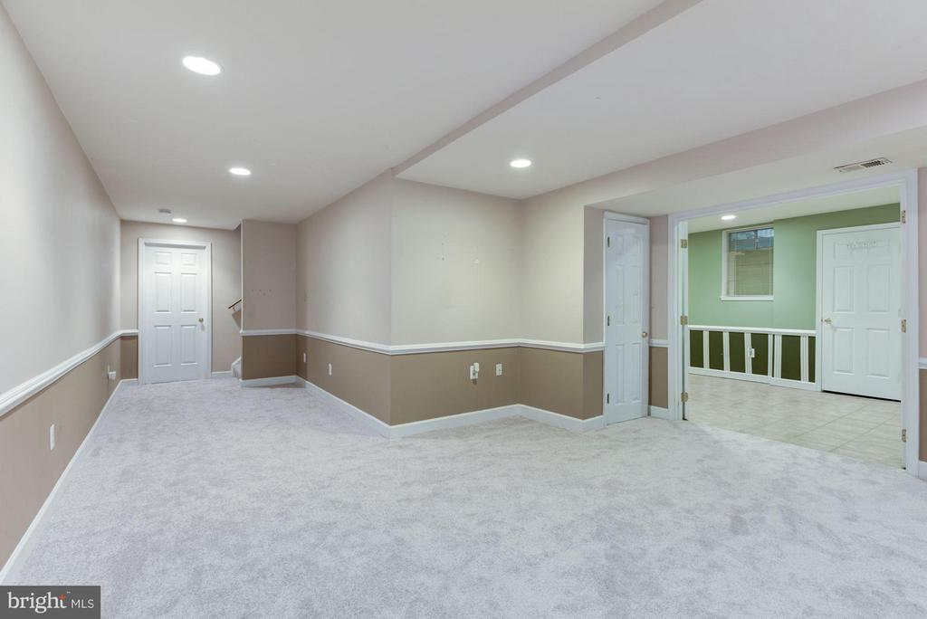 Lower Level Rec Room - 21314 THIMBLEWEED CT, ASHBURN